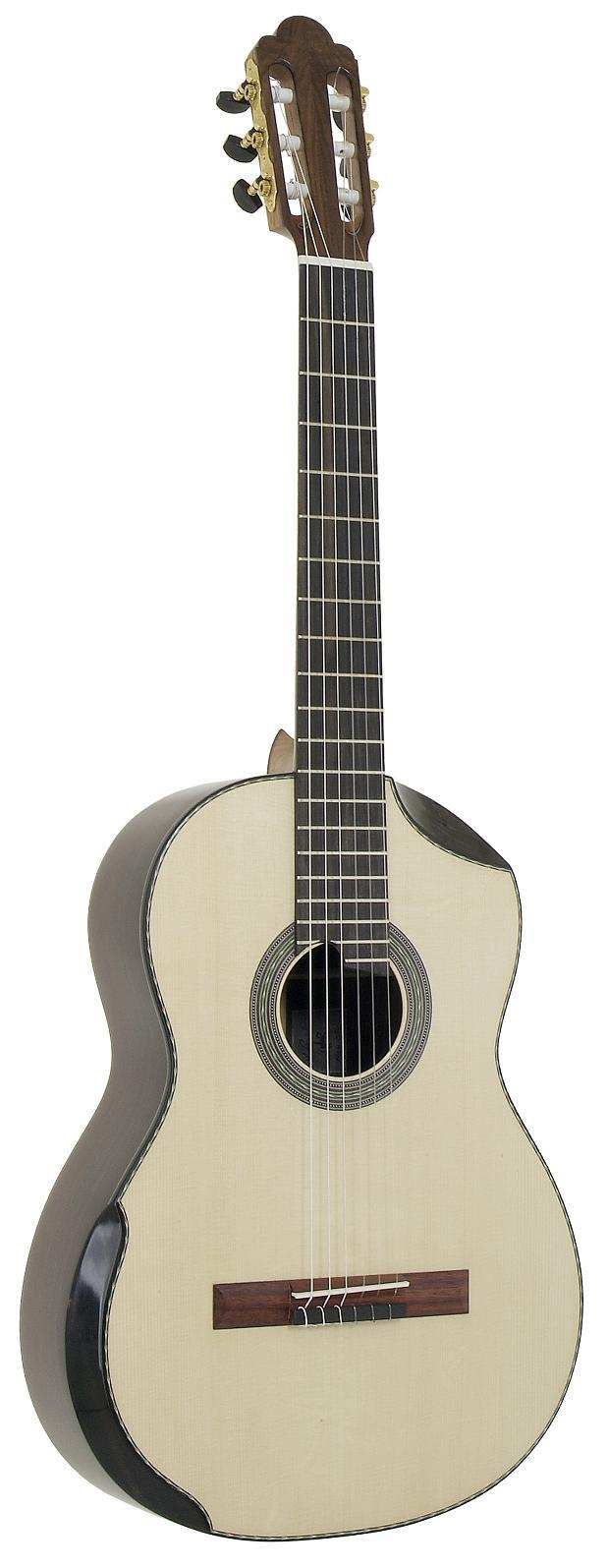 2005 ergonomic guitar florian vorreiter lutherie. Black Bedroom Furniture Sets. Home Design Ideas