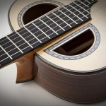 Double Sound Hole